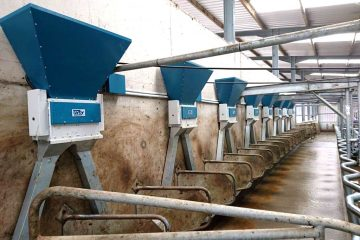 Orby Pneumatic Dairy Parlour Feeding System_dispensing mechanism_in use in milking parlour Ireland